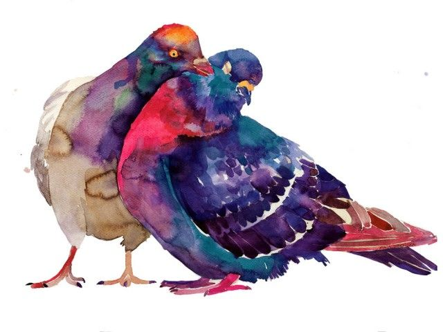 b2eb826d072e10a3c3a9ae47a876c465--watercolor-bird-watercolor-ideas